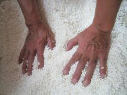 金龍蔵蔵人の手