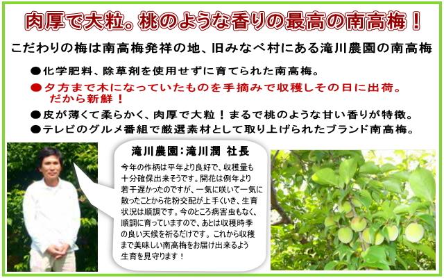 こだわりの梅は、「南高梅発祥の地」、旧みなべ村にある滝川農園の南高梅。◆化学肥料、除草剤は使用せずに育てられた南高梅。◆完熟直前の梅を手摘みで収穫しその日に出荷。だから新鮮!◆梅の大きさは3L-4Lのビッグサイズ。桃のような甘い香りが特徴。◆2002年の7月放送の「どっちの料理SHOW」でも取り上げられたブランド南高梅。