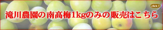 滝川農園産の無化学肥料栽培の南高梅1kg